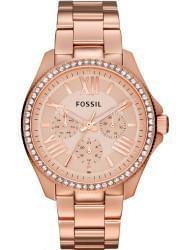 Наручные часы Fossil AM4483, стоимость: 9970 руб.