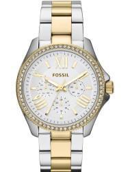 Наручные часы Fossil AM4543, стоимость: 9810 руб.