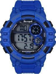 Наручные часы Нестеров H259288-16BG, стоимость: 3490 руб.