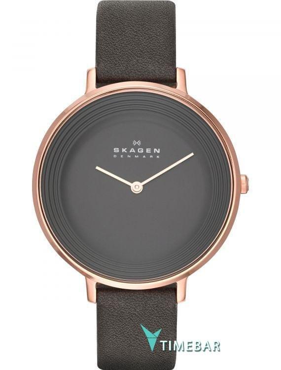 Наручные часы Skagen SKW2216, стоимость: 7240 руб.