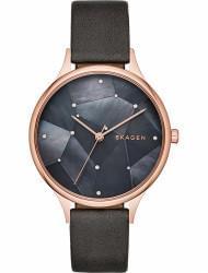 Наручные часы Skagen SKW2390, стоимость: 13720 руб.